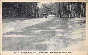 B94/ Brooklyn Michigan Mi Postcard c1910 Wamplers Lake State Park Car Road