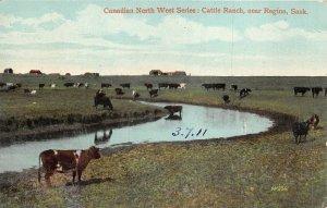 br105544 cattle rach near regina sask canada