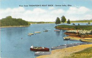 Linen View from Thompson Boat Dock Seneca Lake Ohio OH 1952?