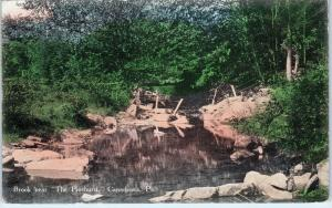 CANADENSIS,  PA Pennsyvania   BROOK near  THE PINEHURST   1911    Postcard
