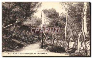 Old Postcard Menton Undergrowth in Cap Martin
