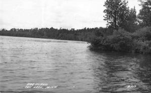 Cass Lake Minnesota Star Island Scenic View Real Photo Postcard JD933441
