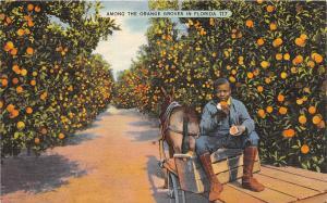 A25/ Black Americana Postcard 1940 Tampa Florida Orange Mule Cart Boy 17