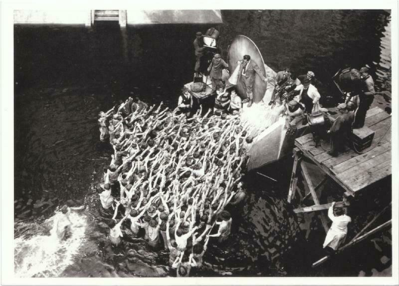 Fritz Lang Director of Metropolis Movie Postcard #2