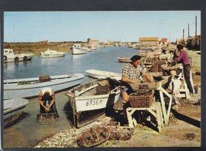 France Postcard - Fishermen - Parcs a Moules - Le Triage  RR6452