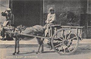 Barbados West Indies Post card Old Vintage Antique Postcard Donkey and Cart U...