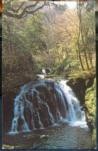 Northern Ireland Tears of the Mountain Glenariff - unposted damaged