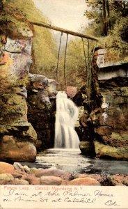 New York Catskills Fawns Leap 1905