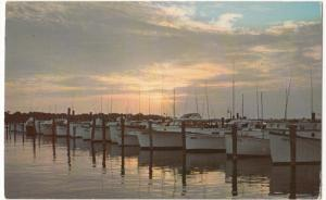 Sunset at Indian River Yacht Basin, south of Rehoboth Beach, Delaware, Postcard