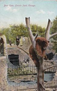 Illinois Chicago Bear Cave In Lincoln Park