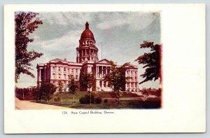 Denver Colorado~State Capitol & Grounds~c1910 Postcard