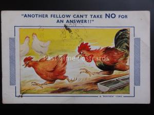 Bamforth Comic Postcard COCK & HENS - ANOTHER FELLOW CAN'T TAKE NO FOR AN ANSWER