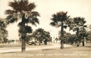 Auditorium State Fair Park 1930s Harlingen Texas RPPC Photo Postcard 12505