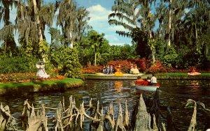 FL - Cypress Gardens. Cypress Knees