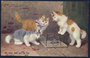 Cats 'Playing' with a Mouse in a Cage used c1908