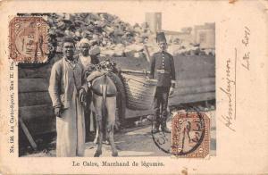 Cairo Egypt Vegetable Seller Antique Postcard J44901
