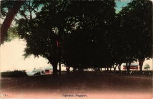 SINGAPORE PC Esplanade (a1437)