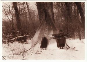 Crow Teepee Firewood Gathering 1908 Native American Modern Postcard