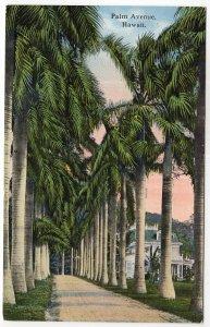 Palm Avenue, Hawaii