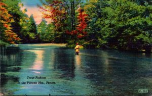 Pennsylvania Trout Fishing In The Pocono Mountains
