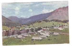 Pahalgam Camping Site-492 , India , 40-60s