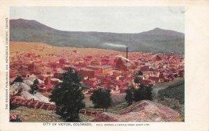 LPS07 Victor Colorado Town Aerial View Postcard