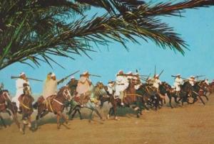 Marruecos Tipico Moroccan Morocco Rifle Display Mounted Horse Parade Postcard