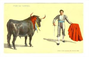 Bullfighting , Mexico , 00-10s ; #2