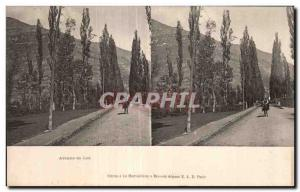 Stereoscopic Card - Avenue de Luz - Old Postcard