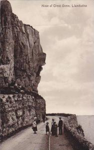 Nose of Great Orme , Llandudno , Wales , 00-10s