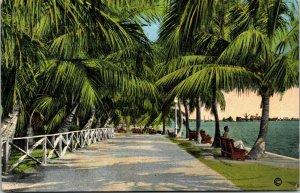 Vtg Promenade In Bayfront Park Miami Florida FL Linen Postcard