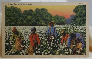 A Busy Day in the Cotton Field Vintage Postcard