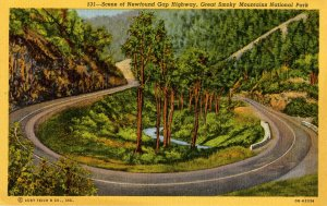 NC - Great Smoky Mts. Nat'l Park. Newfound Gap Hwy