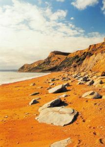 NEW Postcard, The Beach at EYPE, Near West Bay, Dorset, Seaside, Holiday, Sea