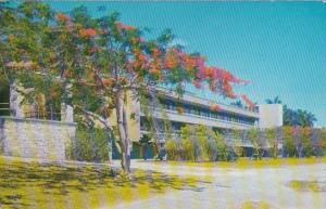 Florida Coral Gables Campus Scene University Of Miami 1962