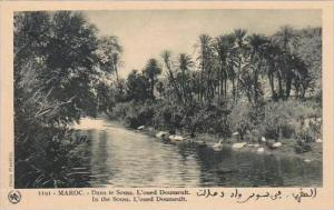 Morocco Maroc In The Souss L'oued Doumeult 1920-30s