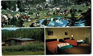 White Pine Lodge, Falers hunting and Fishing Camp
