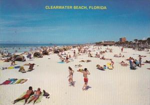 Florida Clearwater Beach Sun Bathers