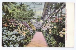 Horticultural Hall Fairmount Park Philadelphia PA UDB c 1908