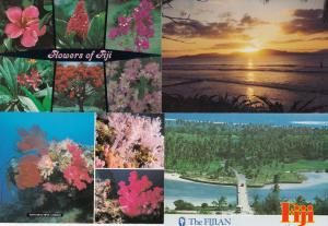 Coral Flowers of Fiji Sunset 4x Fijian Postcard s