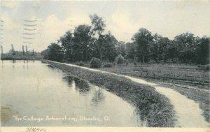 College Arboretum Oberlin Ohio Rotograph #D-4586 1906 Postcard 21-729
