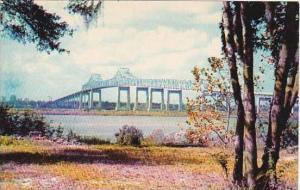 Florida Jacksonville John E Matthews Bridge
