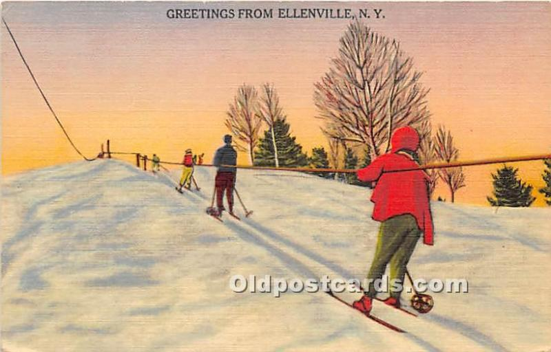 Eleenville, New York, NY, USA Skiing Postcard Greetings from