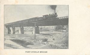Fort Steele Wyoming~Fort Steele Bridge~Trail on Railroad~1905 B & W Postcard