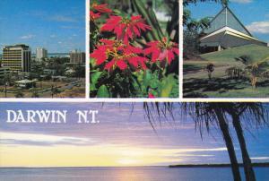 DARWIN, Northern Territory, Australia, 1950-1970's; Darwin Skyline, Poinsetti...