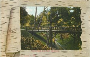 Milwaukee Wisconsin~Lake Park Rustic Bridge Over Ravine~Birch Bark Frame~1909