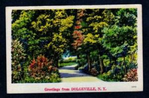 NY Greetings from DOLGEVILLE NEW YORK PC Postcard Linen