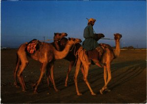 PC CPA SULTANATE OF OMAN, CAMEL RIDER, REAL PHOTO POSTCARD (b16345)