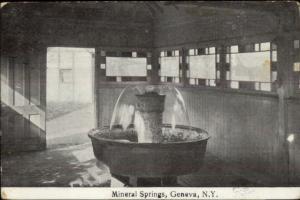 Geneva NY Mineral Springs c1910 Postcard