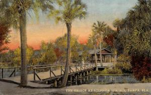 Tampa Florida~Sulphur Springs Wooden Bridge~Shelter House~Sunset~1908 Postcard